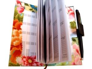 covereddiary_03